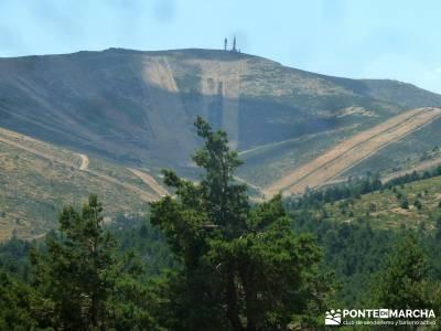 Loma del Noruego; Pinares Valsaín; senderismo viajes;excursiones semana santa